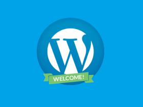 新手理解WordPress的基本指南要点