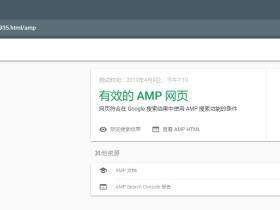 谷歌AMP如何通过验证正是上线?AMP如何在移动端显示闪电图标